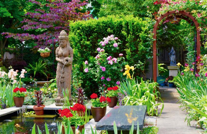 Ordinaire The Backyard Buddies
